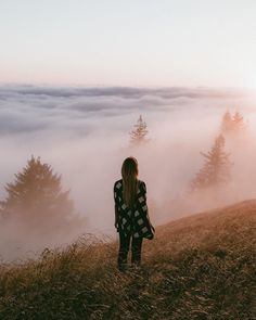 Art of Visuals - Be Visually Inspired By! @christiannbecerra Mount Tamalpais State Park Lightroom presets have been added to the store! Click The Link in Bio ! #artofvisuals #bevisuallyinspired...