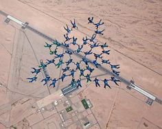 Members of the U.S. Air Force Academy jump team, Wings of Blue, set a world collegiate skydiving record when 46 jumpers linked together March 31, 2012, at Gila Bend Auxilliary Field, Ariz. (U.S. Air Force photo by Tech. Sgt. Joseph Valente)
