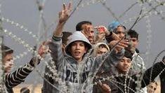 Image result for gaza palestine