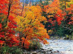 photo paysage automne qu�bec