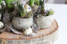 Touches of Spring Decor / Dekoration für Ostern mit einer Etagere ♥ Bulb Flowers, Dried Flowers, Plant Bags, Spring Home Decor, Floral Foam, Hallway Decorating, Plant Decor, Spring Flowers, Flower Arrangements