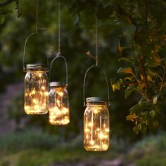 The built-in light sensor turns the lights on Light Source Colour: Warm WhiteIP Class: Info: 1 battery AAA rechargeable. of Lamps: 1 Fairy Lights In Trees, Mason Jar Fairy Lights, Solar Fairy Lights, Outdoor Fairy Lights, Jar Lights, Bottle Lights, Hanging Lights, Lantern Fairy Lights, Garden Fairy Lights
