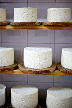 Cabrales cheese. Asturias. Spain