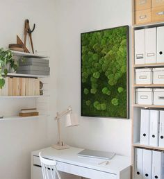 Shop our Merging Moss Green Wall online. Flat and pincushion moss frames, hand built of real moss. FREE fast Shipping to UK and EU. Moss Wall Art, Moss Art, La Petite Boutique, Home Office, Green Wall Art, Highland Homes, Forest House, Co Working, Plant Wall