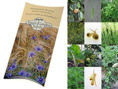 Saatgut Set: 'Mittelalter Garten', 7 Pflanzen für den mittelalterlichen Nutzgarten als Samen in schöner Geschenk-Verpackung: AmazonSmile: Garten