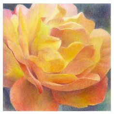 Pastel drawing of flower.
