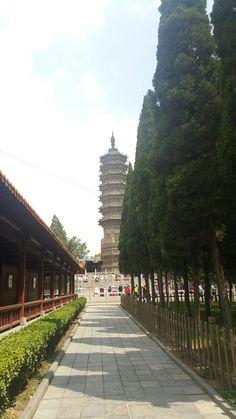 Linki temple shijiazuang