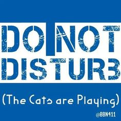 Yes, when Kentucky is playing, I do not want to be disturbed lol University Of Kentucky, Kentucky Wildcats, Kentucky Derby, Wildcats Basketball, Basketball Coach, Basketball Humor, Uk Football, Kentucky Sports, Kentucky Basketball