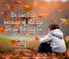 Picture Quotes: We don't die because of old age