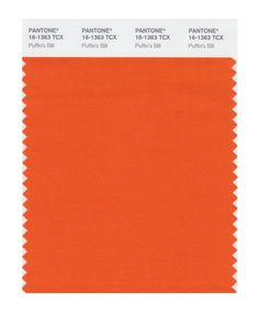 Amazon.com: Pantone 16-3915 TCX Smart Color Swatch Card, Alloy: Home Improvement Firecracker, Dark Shades, Spring Colors, House Painting, Brown And Grey, Pantone, Swatch, Spicy, Home Improvement