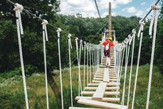Fully guided zip line tours right in Rockford!