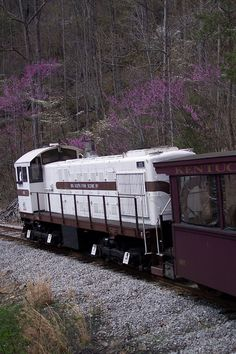 Stearns, KY - Big South Fork Scenic Railway gives guests a train ride through the scenic mountains of southern Kentucky and stops at a historic coal town.