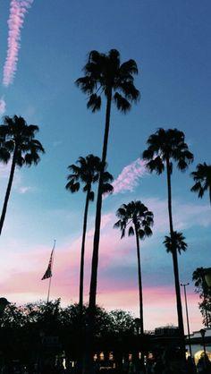 • pinterest: @mayaxnicolexdes •