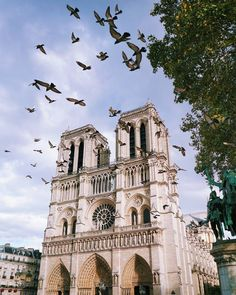 ** Notre-Dame de Paris by Vutheara (@vutheara) | Twitter