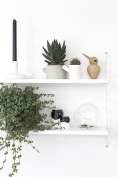 Shelf styling | Shelf decor | Shelves | Shelfie |