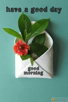 Good Morning Sunshine, Good Morning Messages, Good Morning Good Night, Good Morning Wishes, Good Morning Images, Mourning Quotes, Apj Quotes, Good Night I Love You, Morning Board