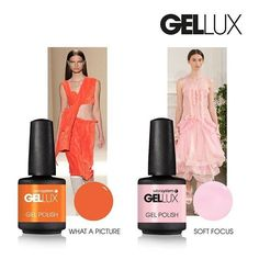 8 'picture perfect' shades What A Picture & Soft Focus #gellux