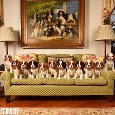 My dream....so much love on that couch!