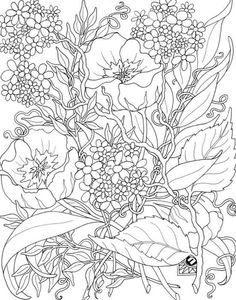 Zen Art Coloring Pages Books Colouring Artsy Fartsy