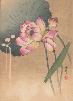 (1) Tumblr Japanese Painting, Chinese Painting, Chinese Art, Tatoo Flowers, Image Zen, Ohara Koson, Art Japonais, Art And Illustration, Wow Art