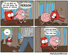 Heart and Brain Funny School Memes, Silly Memes, Funny Memes, Hilarious, Funny Quotes, Akward Yeti, The Awkward Yeti, Verona, Hilarious Memes