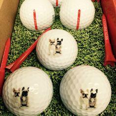Barking golf balls don't bite...