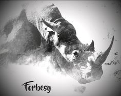 Graphic Art and Web Design. Forbesy brand is creative centre where we create print graphics and web design ideas as well as adventure accessories and apparel. Adventure Outfit, Graphic Art, Moose Art, Black And White, Creative, Movie Posters, Photography, Animals, Image
