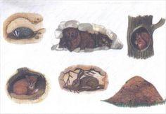 Użyj STRZAŁEK na KLAWIATURZE do przełączania zdjeć Winter, Painting, Animals, Biology, Winter Time, Animales, Animaux, Painting Art, Paintings