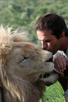 The Lion Whisperer Kevin Richardson Kevin Richardson, Beautiful Cats, Animals Beautiful, Animals And Pets, Cute Animals, Wild Animals, Baby Animals, Lion And Lioness, Lion Love