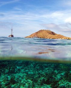 Everyday should be Earth Day. #wonderfulindonesia #earthday #underwater