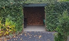 Veg Garden, Garden Seeds, Home And Garden, Carport Designs, Garage Design, House Design, Bike Shelter, Bike Shed, Outdoor Spaces