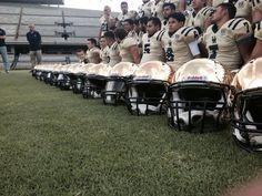 Pumas CU 2015