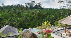 Photos of Puri Sebali Resort, Ubud - Resort Images - TripAdvisor Ubud Resort, Bali, Ubud Hotels, Outdoor Furniture Sets, Outdoor Decor, Hotel Reviews, Trip Advisor, Places, Travel