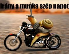 Motorcycle, Motorcycles, Motorbikes, Choppers