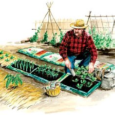 How to Make Instant Garden Beds Plastic Fencing, Mushroom Compost, Starter Garden, Dig Gardens, New Starter, Soil Improvement, Bush Beans, Liquid Fertilizer, Mother Earth News