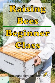 Beekeeping 101 Learn how to have a beehive of your very own. This beginner beekeeping class will hel Backyard Beekeeping, Beekeeping Course, Farm Chicken, Chicken Tractors, Bee Life Cycle, Bee Hive Plans, Beekeeping For Beginners, Raising Bees, Bee Boxes
