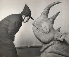 Dali with a rhino