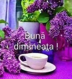 Imagini buni dimineata si o zi frumoasa pentru tine! - BunaDimineataImagini.ro Good Night I Love You, Good Morning Good Night, My Love, Motto, Quotes, Lugares, My Boo, Quotations, Qoutes