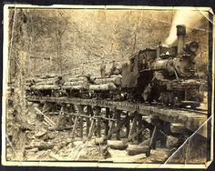 logging Trains | Logging train at the Montvale Lumber Company at Eagle Creek