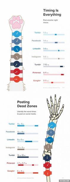 "Social media ""dead zone"" times - #pinterest #twitter #facebookWish Reddit was on here.."