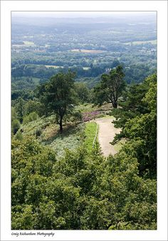 View from Leith Hill Tower by Craig Richardson, via Flickr