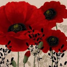 Red poppies II Canvas Art - Wood Linda (24 x 24)