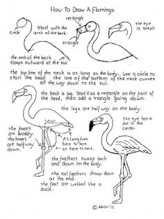 How to Draw Worksheets for The Young Artist: How To Draw A Flamingo Worksheet and Lesson