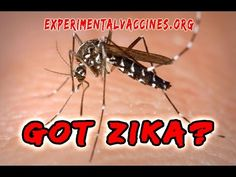 Zika Virus Billions In Funding: Scared Yet? - YouTube https://www.youtube.com/watch?v=_Oy7IeWPL7M&feature=em-uploademail
