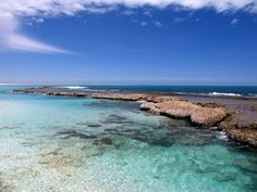 Oyster bay, Ningaloo Reef in Australia.