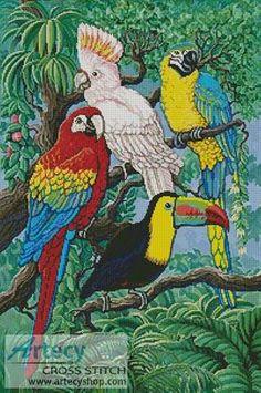 Tropical Birds - Bird cross stitch pattern designed by Tereena Clarke. Category: Parrot.