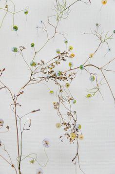 Flower constructions Anne Ten Donkelaar Framed Leaves, Flower Collage, Plant Painting, Interior Garden, Design Seeds, Collage Artists, Flower Wallpaper, Flower Seeds, Art Model