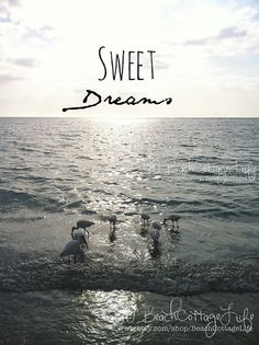 sweet dreams | René Marie Photography | Beach Cottage Life | https://www.facebook.com/BeachCottageLifePhotography