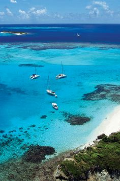 St. Vincent & The Grenadines - Tobago Cays