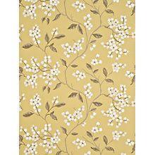 Buy GP & J Baker Apple Blossom Wallpaper Online at johnlewis.com
